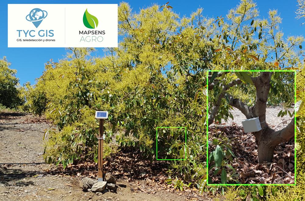 Nueva versión de Sensor agronómico V2 – Mapsens® Agro